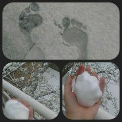اولین روز برفی ماکوووو ☺☺ژووون بلف بالید
