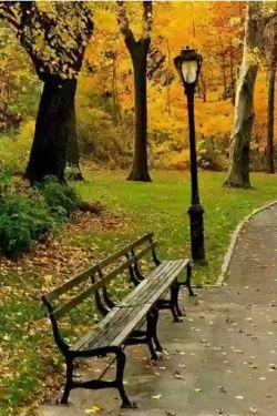 پاییز تنهایی راپررنگ تر میکند  باد پاییزی  یک مشت حسرت تکراری  با خودش می آورد ... پاییز جان می دهد برای عاشقی کردن  برای دوتایی بودن  شریک شدن یک چتر زیر نم باران قدم زدن پهلو به پهلو و سکوت و خش خش زرد و نارنجی برگهای چنار ... پاییز را سخت میشود تنهایی گذراند ...
