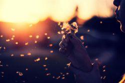 كسی به خدا گفت: اگر سرنوشت مرا تو نوشتى، پس چرا آرزو كنم؟ خدا گفت: شاید نوشته باشم هر چه آرزو كند!!!