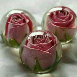 سه چیز انسان را شاد میکند ..  اولین مورد،  ارتباطهای انسانی است ... دوست داشتن و دوست داشته شدن ! دوم طبیعت است ...  کوه , کویر . دریا , .... و شاید گلها و گیاهان کمی بیشتر! سومین مورد نیز،  خندیدن است ... خندیدن از ته دل !  فکرش را بکنید هر سه مجانی هستند .. بی هیچ بهایی!!!  پس شاد باش بی هیچ بهانه ای !