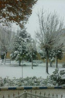 بارش برف  شهر مقدس قم