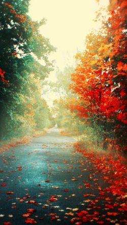 مطمـئن باش که خداوند تو را عاشقانه دوست دارد ؛ چون در هر بهار برایت گل می فرستد و هرروز صبح آفتاب را به تو هدیه می کند
