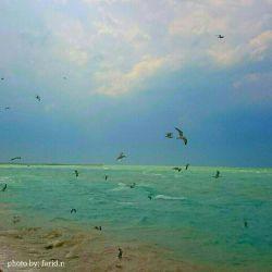 دریای خلیج فارس... بوشهر  #بوشهر #دریا
