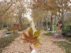 # پاییز # کوه سنگی # خودم # مامان بابام :))