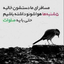 بیاد تمام عزیزانی که دیگه بین ما نیستن،،، اللهم صل علی محمد وال محمد وعجل فرجهم،،،
