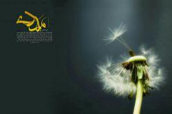 بخوان دعای فرج را که یار برگردد_ بخوان دعای فرج را که شب سحر گردد_  بخوان دعای فرج را اگر که می خواهی_ حدیث غیبت یار تو مختصر گردد_  بخوان دعای فرج را و از خدا بطلب_ وجود نازکش ایمن ز هر خطر گردد_  بخوان دعای فرج را کنار پردۀ اشک_ که دانه دانۀ اشکت دُر و گوهر گرد_