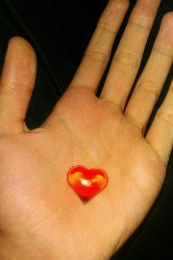 مصطفی عشقم را چگونه ثابت کنم