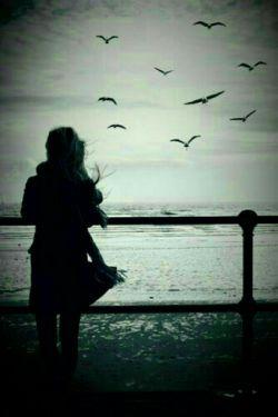 دلم خوش نیست غمگینم شاید نفهمیدکسی ،شاید نمیداند کسی،شاید نمیگیردمرا از دست تنهایی،تو میخوانی، فقط شعری ،و زیر لب آهسته میگویی....!! عحب احساس زیبایی.. شاید تو هم نمیدانی...   #مجتبیٰ#