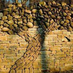 درخت سنگی