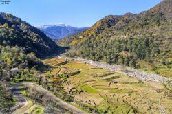 مازندران . روستای آری