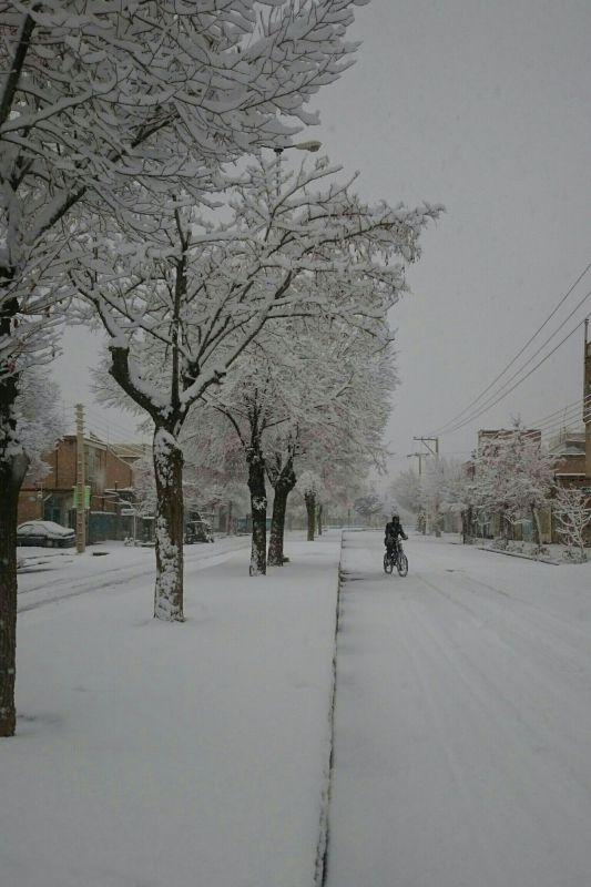 استان چهارمحال و بختیاری، فرخشهر. امروز صبح