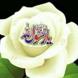 شب تولد سیدالمرسلین ورییس فقه جعفری بر همهی شما مبارک  باشد