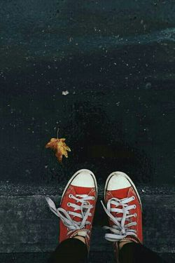 """آخرین قراری که با هم گذاشتیم این بود: دیگر سر راه هم  """"سبز"""" نشویم دیروز زیر باران اتفاقی به هم بر خوردیم سبز تر از همیشه دیدمت اما من همچنان پای قولم هستم چرا که بعد از رفتنت خشکیدم"""