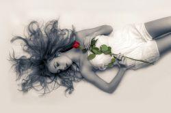 شاخه گل تو، تنها همراه من بعد از رفتن توست هروقت ک دلتنگ میشوم و هوایت را میکنم....
