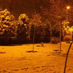 یک شب برفی