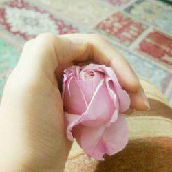 این گل رو خودم کاشته بودم ولی این عروسمون رفت کندش..... خیلی ناراحتممممم