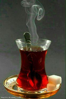 سلااام صبحتون بخیر،،،،،،یه سلام مخصوصم برا سحرخیزا اونایی که بعدازنمازوورزش،حالا بایه استکان چای داغ میخوان صبحونشونو شروع کنند،،،،به امروز خوش اومدید