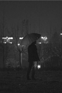 گم شد هر که به دنبال تو گشت.