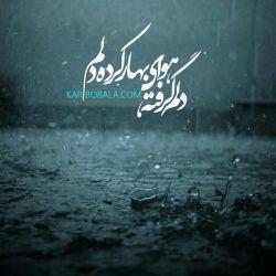 دلم گرفته هوای باران کرده دلم! امیرالمومنان،چرا از هرجای دنیا نام تو را میشنوم...بوی خون می آید!