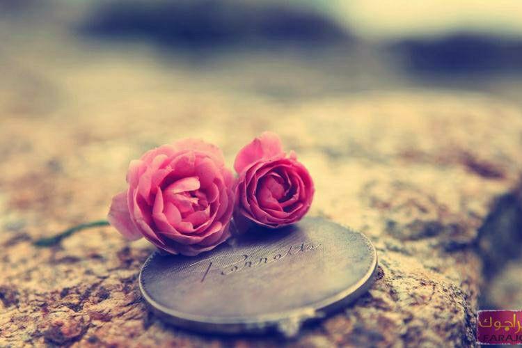و چه زیبا گفت مرحوم خسرو شڪیبایی: عمر با ارزشترین داراییِ آدمه. اگر کسی برات وقت گذاشت یعنی داره از ارزشمندترین و غیرقابل تکرارترین چیزی که داره رو خرجت میکنه! قدرش رو بدوڹ ...