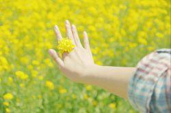 یادتان باشد، وقتی خورشید میدرخشد هر کسی میتواند دوستتان داشته باشد... در طوفان است که متوجه میشوید چه کسی واقعأ به شما علاقه دارد... چه زیباست که در اندیشهمان ، دوست داشتن است. چه شادیبخش است، وقتی نگاهمان میخندد. چه مست میشود این دنیا، آنگاه که دلمان پر از امید به ﻓردایی روشن است. بیشک معجزهای در راه است...سلام دوستهای گلم ...امیدوارم خوب وسلامت باشید...