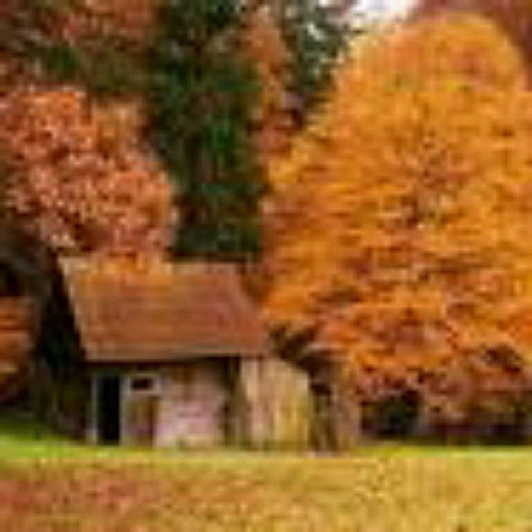 عکس زیبایی  از کلبه در پاییز