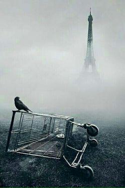 بعد از رفتنت  هیچوقت نفهمیدم از مرگ دور میشوم یا به آن نزدیک....