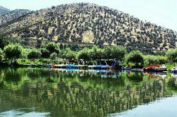 فروش سرویسهای اینترنت پرسرعت #شاتل در #مریوان آغاز شد  فروش سرویسهای اینترنت پرسرعشت #شاتل (ADSL2+) در شهر #مریوان در استان #کردستان با تحت پوشش قرار دادن این شهر آغاز شد.  متقاضیان برخورداری از سرویسهای آرت و اکوی اینترنت پرسرعت #شاتل میتوانند در مرکز مخابراتی یادگار امام با پیششمارههای 3452، 3455، 3459 و 3461 با شرکت صفر و یک گستر میرآوا، نمایندگی گروه شرکتهای شاتل در مریوان با شماره تلفن 08734533101 تماس بگیرند.  #شاتل #اینترنت #مریوان #کردستان #Shatel #internet