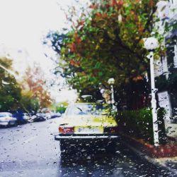 ابرها،راه گم کرده اند... وگرنه کوچه ی بی درخت،باران می خواهد چه کار...!؟ که تنهاییِ کبوتری را تا پشت بی قراری پنجره ی ما بکاشند...!؟ یا غربت لنگه کفشی خیس را روی سیم های چراغ برق،که هی از بندهایش اشک می چکد...!؟ درخت باران می خواهد چه کار...!؟ پنجره باران می خواهد... نگاه خسته باران می خواهد... دلتنگی!دلتنگی باران می خواهد...