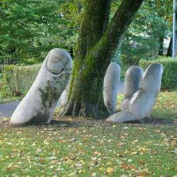 دستهایم به آرزوهایم نرسید...آنها بسیار دورند...اما درخت سبز صبرم میگوید:  هنوز امیدی هست... دعایی هست... خدایی هست...!!