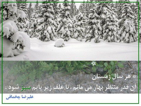 * هر سال زمستان ، آن قدر منتظر بهار می مانم ، تا علف زیر پایم سبز شود .