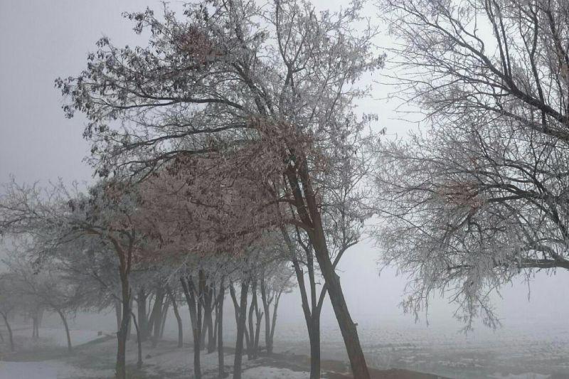 برف و مه،  استان چهارمحال و بختیاری،  فرخشهر