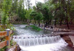 پارک جنگلی وکیلآباد نزدیکترین ییلاق عمومی مشهد است که در انتهای بزرگراه وکیل آباد قرار دارد. مساحت وکیلآباد بیش از ۷۰ هکتار و دارای رودخانه فصلی است. www.roshanygasht.ir