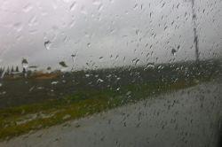 باران باریدن را دوست داشت,وزمین عاشق باران بود,اما ابرها نمی آمدند,دشت دعا کرد باد بیاید ابرها را بیاورد,...دعایش مستجاب شده بود..