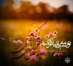 روزهای زیادی اومدم به تو سلام کردم  صبحم رو با تو شروع کردم  و تو روزم رو زیبا کردی با سلام به امام زمانت #روزت_را_زیبا_کن 