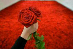 این گل رو به هر کسی که دوسش داری تقدیمش کنی رو تگش کن