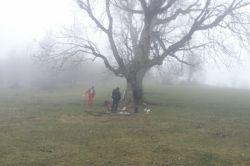 گرگان، زیارت، منطقه شمسک، گلی، 941024
