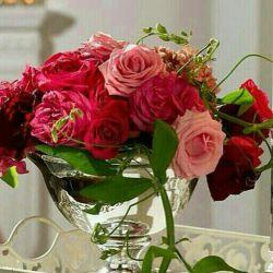 سلام صبح شنبه تون بخیر امیدوارم آغازهفته خیلی خوبی داشته باشید(تقدیم باعشق)گل باشیدعمرگل نداشته باشید