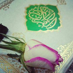 لطفاً به نیت سلامتی و تعجیل در فرج امام زمان عجل الله تعالی فرجه الشریف، یک بار سوره توحید قرائت بفرمایید.