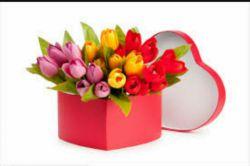 تقدیم به گل نازم چون امروز بابت یه خبر خوب خیلی خوشحاله ....
