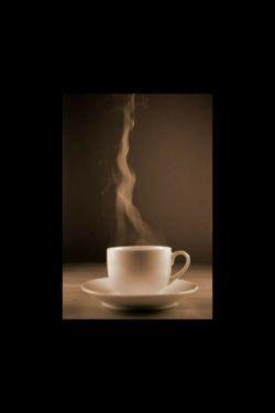 جوانیم همچو بخار چایی درحال محو شدن است.شاید روزی جوانیم جزئی از تکه ابری شود و بر سر شهرها ببارد اشک جوانیم را.