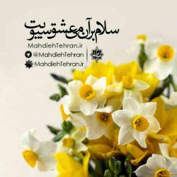 هذا یوم الجمعه سلام بر آن گل لبخند رویت سلام بر آن می عشق سبویت بگو که کی می آیی یابن الزهرا که ما یک جمله گردیم خاک کویت