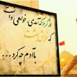از خدا خواسته ام لحظه ی پابوسی تو #_نفس_آخر خود را بکشم پانشوم... سلام خدمت همه ی دوستان ان شاءالله پس فردا راهی دیار عشق هستیم...بدی و خوبی دیدین حلال کنین...ب یادهمه هستم اگه لایق باشم...ان شاءالله قسمت همه ...در پناه #_امام_حسین(ع)باشید... یاعلی.