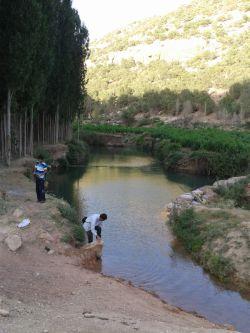 کرمانشاه-بخش هلشی-روستای مستعلی