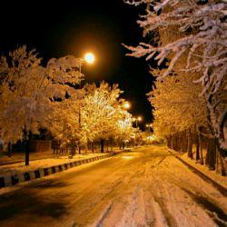 شب که می رسد یادم می آید دیگر نیستی سرما اوج می گیرد واژه ها قندیل می بندند وقتی از نبودنت می نویسم آغوشت را ندارم هیچ تن پوشی حریف این سرما نیست راستی که این زمستان بی تو زیادی زمستان است...!!!