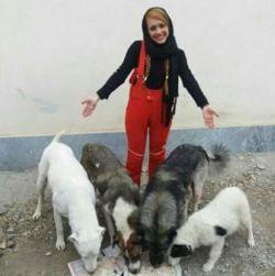 این خانم از حامیان سگ های بی سرپرست بودند.از قراری امروز در حین کمک رسانی  تصادف کردند و بر اثر این  سانحه فوت شدند .خدا بیامرزدش..روحش شاد و جایش در بهشت