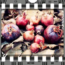 Photography .......... #Layout Subject .......... #Pomegranate Registration ........... #Casio_Camera Full Courses #Photography  Free School Of #Visual_Arts #RaHa  عکاسی ........ #چیدمان سوژه ........... #انار #برگ ثبت .......... #دوربین_کاسیو #آموزش دوره کامل #عکاسی  #آموزشگاه_آزاد #هنرهای_تجسّمی #رها