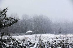 برف و کلبه