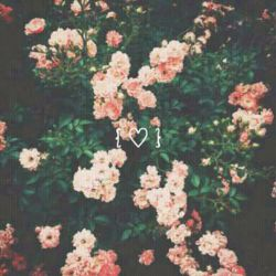 deαr нeαrт❤ тнαɴĸs for coɴтιɴυoυsly  вeαтιɴɢ тo ĸeep мe αlιve ι'м sorry тнαт нe вroĸe yoυ   вυт ι'll proтecт yoυ froм ɴow oɴ  αɴd ɴever αll ιɴ love αɢαιɴ LOVE,ME :)