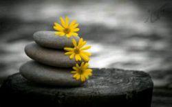تنهاکسی که قلبت رانخواهدشکست همان کسی است که آن راساخته است... پس همیشه فقط به خداتکیه کن...!!!